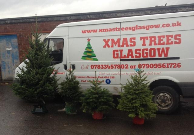 XMas Trees Glasgow Warehouse