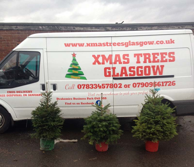 Xmas Trees Glasgow delivery van